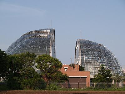夢の島植物館
