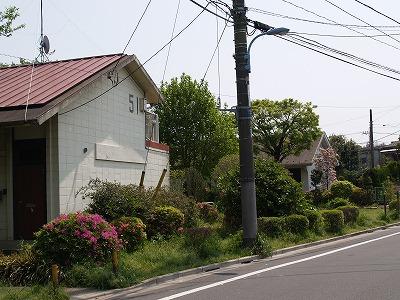 asagayadanchi53.jpg