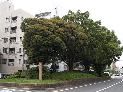 ichirizuka62.jpg
