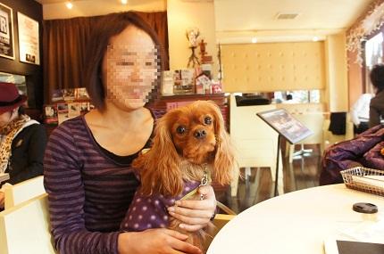 嵐丸 2011.12.20-15
