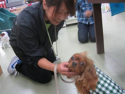 嵐丸 2012.1.7-2