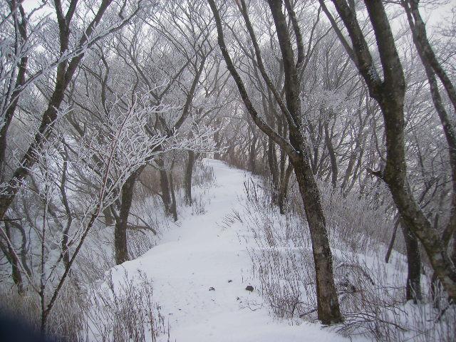 新雪の尾根道45