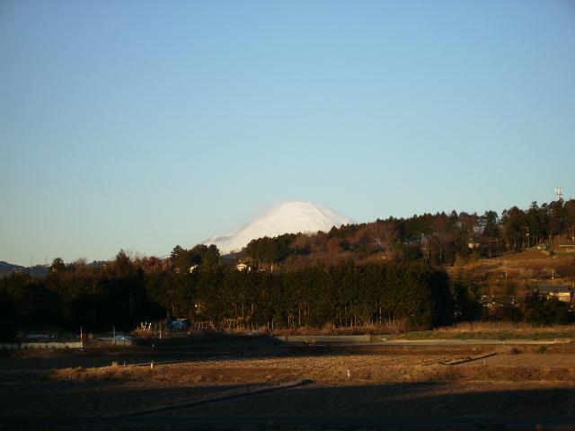 白富士23