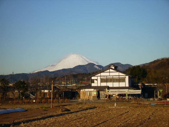 白富士34