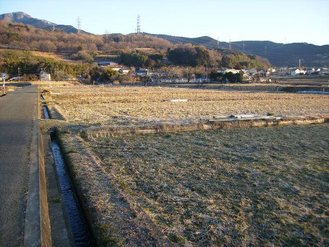 冬の田んぼ26