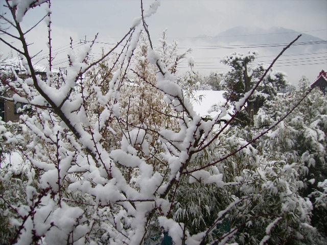 2階からの雪の風景02