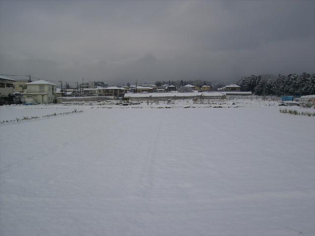 畑の雪07
