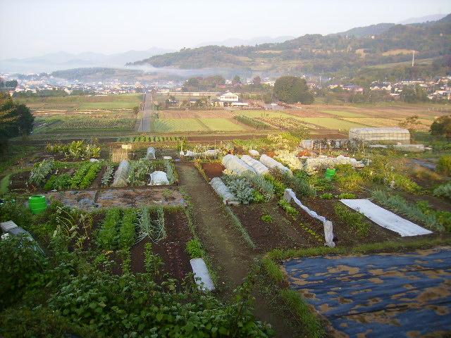 田原盆地035