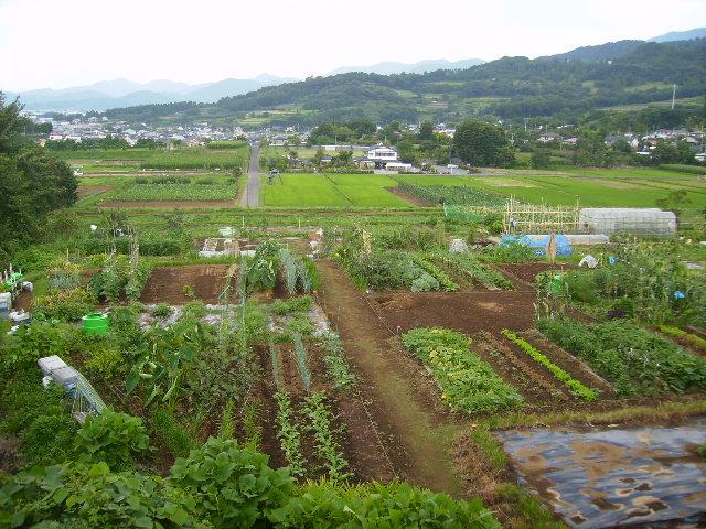 田原盆地062