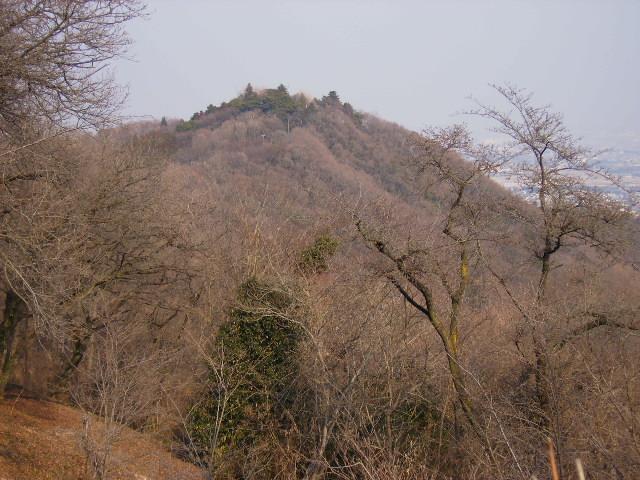 弘法山を望む97
