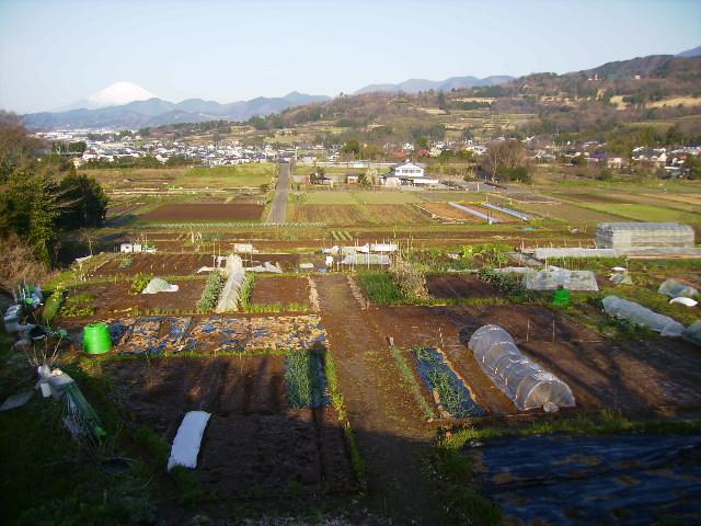 初春の田原盆地24