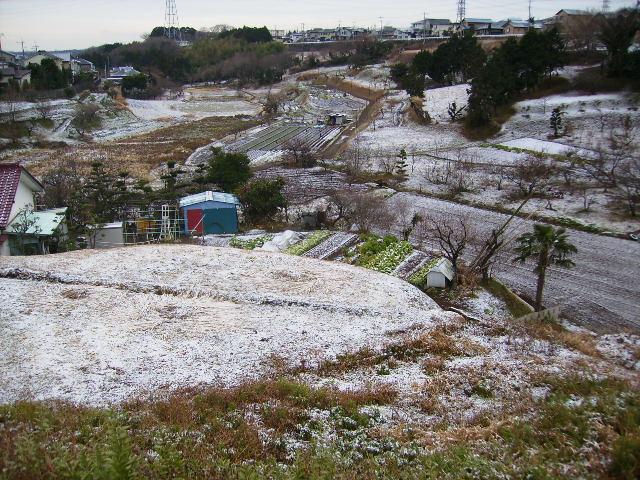 雪の藤棚の谷241