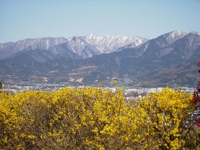 春雪の丹沢128