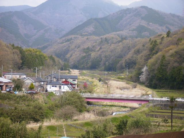 甘柿橋を望む03