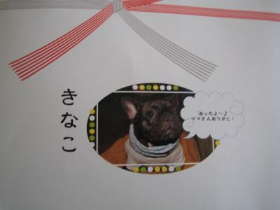kaikiiwai-2.jpg