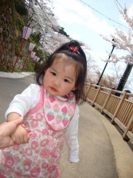 桜とみぃちゃん