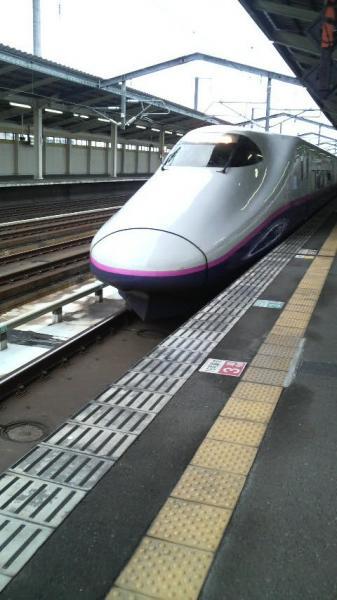 P1000358.jpg