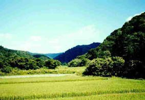 Shitinaga_beyond.jpg
