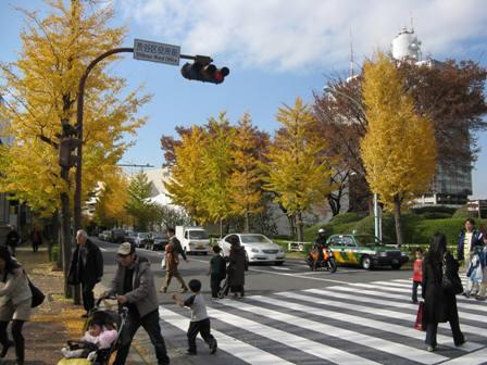 IMG_3499紅葉 街