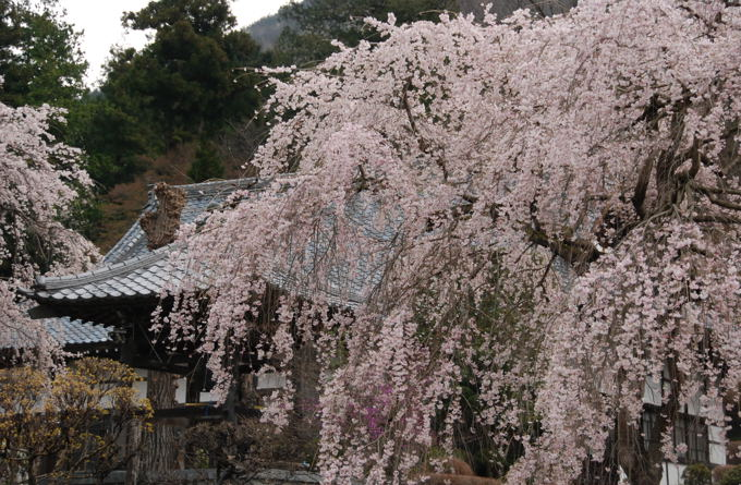 houzenji1
