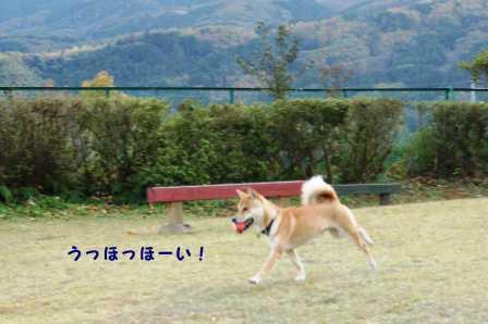 2008_11220330.jpg