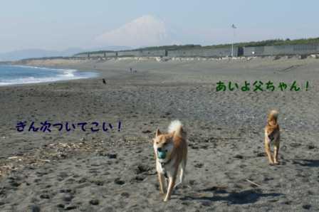 2008_12200112.jpg