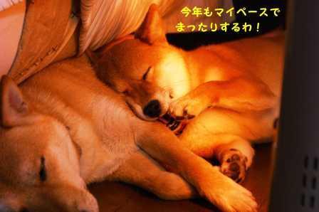 2009_01020236.jpg
