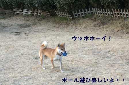 2009_01180035.jpg