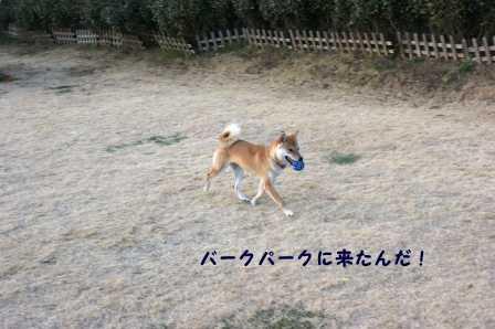 2009_01180036.jpg