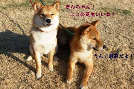 2009_01180063.jpg