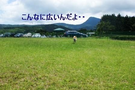 2009_06070022.jpeg