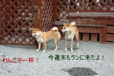 2009_07200210.jpeg