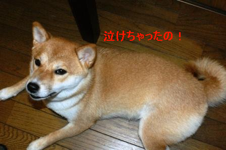 2009_08130025.jpg