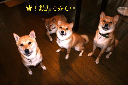 2009_08130036.jpg