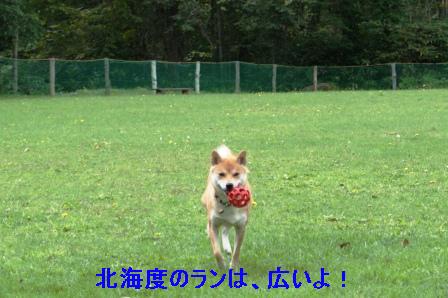 2009_09110117.jpg