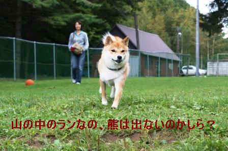 2009_09110209.jpg