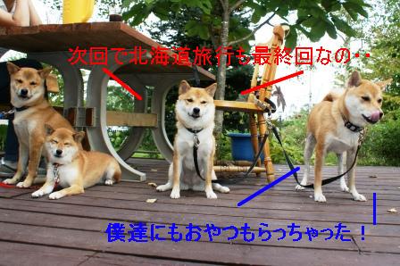 2009_09110353.jpg