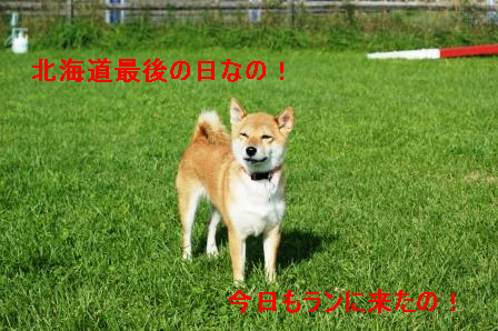 2009_09120052.jpg