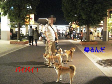 2009_09260056.jpg