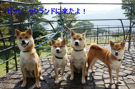 2009_09270032.jpg