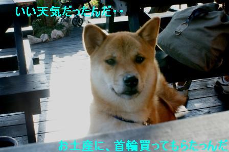 2009_10110049.jpg