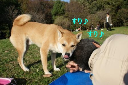 2009_11150067.jpg