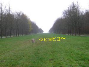 2008112607.jpg