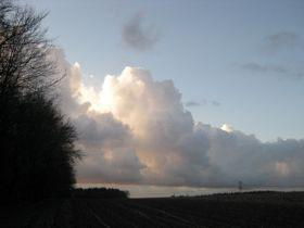 2008120514.jpg