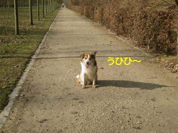 20090130005.jpg