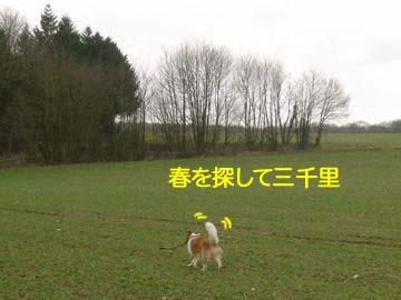 2009022706.jpg