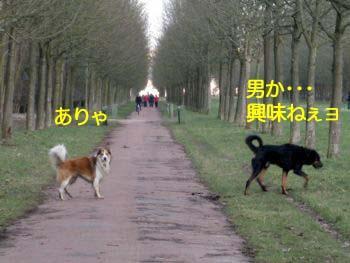2009030909.jpg