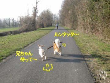 2009032507.jpg