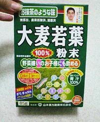 NEC_0043_sh01.jpg