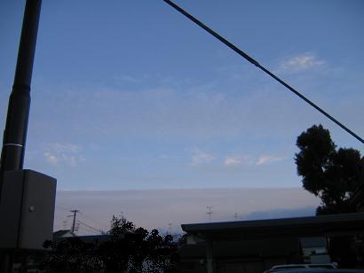 IMG_7959.jpg